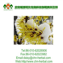 Factory supply 100% natural Witch hazel extract