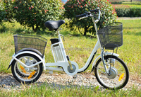 adults 3 wheel electric mopeds from china with pedal assist