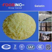 unflavored organic halal density edible gelatin powder price 240 bloom