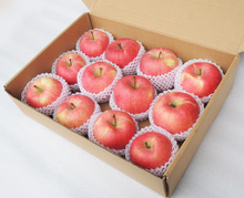 lowest price fresh fruit import red fuji apple from China