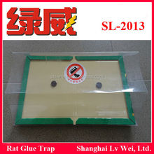 mouse and rats glue traps white glue