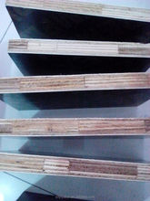 finger jointed core film faced plywood
