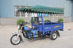 3 Wheel Motorcycle with Roof and 175cc engine