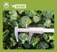 Frozen broccoli blanched broccoli blanched broccoli
