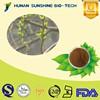 Pharmaceutical Grade CAS 138-52-3 25% / 98% Salicin White Willow Bark Extract Salicin Powder Easing Fever and Flu Symptoms