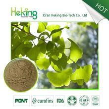 Herb extract ginkgo biloba extract 24,ginkgo biloba extract 24