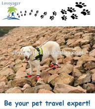 calçados impermeáveis cão esporte ao ar livre botas