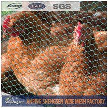 chicken coop hexagonal wire mesh / hexagonal chicken wire mesh