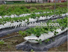 Biodegradable plastic agriculture mulch film with hole