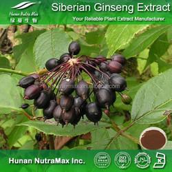Siberian Ginseng Extract, Eleutherococcus Senticosus Extract, Siberian Ginseng Root Extract Eleutheroside B+E