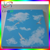 LXG43 blue sky wall panel wooden grain pvc 60x60 mineral ceiling tiles