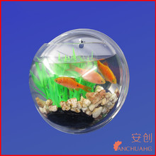 cute wall mount acrylic fish tank
