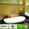 Odorless non-toxic waterproofing paint for bathroom