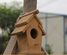 bird wood house
