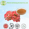 High quality flower Extract of Crown of Thorns / Crown of Thorns Extract