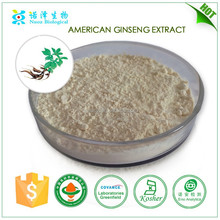wholesale alibaba medicine for blood circulation American ginseng extract