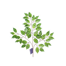 3 branches of artificial bodhi tree leaves branches