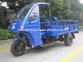 Vehículo de tres ruedas para adultos, 3 de la rueda del coche para la venta