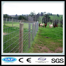 Gold manufacturer hot dipped galvanized wire fencing horses