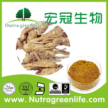 100% Natural Angelica Sinensis P.E,Angelica Extract ,Angelica Dahrica P.E