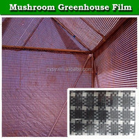 agricultural anti aging uv protection greenhouse plastic film for mushroom growing