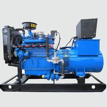2015 nuovi prodotti su porcellana potenza del generatore di gas naturale con ce