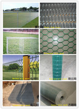 Made in China wire mesh/ wire netting