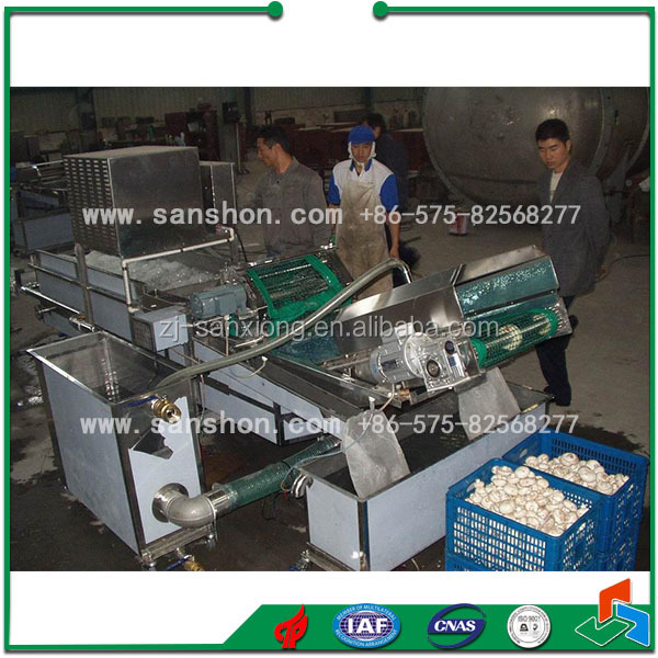 Cleaning Equipment Mushroom Washing Machine