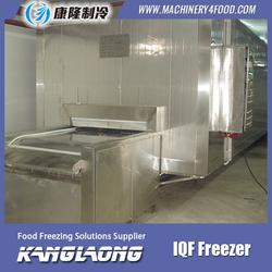 Large Capacity Shrimp freezer for frozen chicken wings