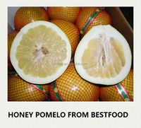 New crop fresh pomelo name all citrus fruits
