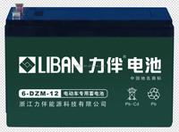 12V LIBAN deep cycle battery lead acid battery 6-DZM-12