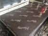 18mm Film Faced plywood to Turkey market