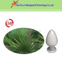 100% pure nature herb saw palmetto plant extract