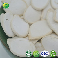 2015 New Crop High Quality Snow White Pumpkin Seeds