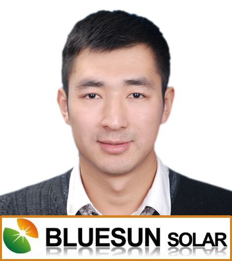 China best PV supplier bluesun poly 250 watt photovoltaic solar panel