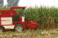Indonesia Sweet corn combine harvester
