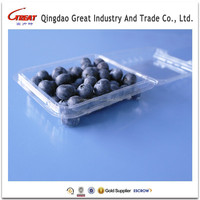Transparent Plastic Fruit Blueberry Packaging Container
