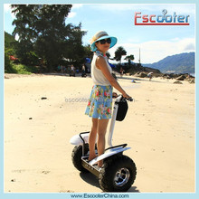 2000W Powerful Best Adult Electric Human Personal Transporter Vehicle
