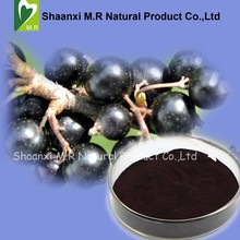 Factory Supply Black Currant Extract Anthocyanins 25% Powder