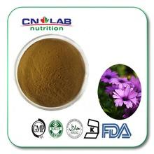 Echinacea purpurea ,echinacea extract, Cichoric acid