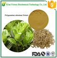 100% Natural Polygonatum odoratum Extract Powder