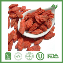 Hot selling classic new products dried goji berry fruit