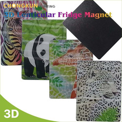 custom 3D fridge magnet with lenticular 3D printing souvenir fridge Magnet