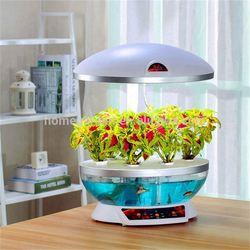 new style fish tank
