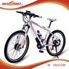 CE china supplier gear electric chopper bike