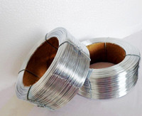 2.0-0.4mm wooden case nail wire ,staple wire,brush wire