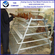 china manufacturer 95% egg production egg farm for chicken cage
