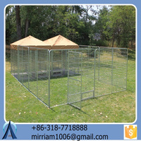Hot Sale Cheap Durable and Anti-rust New Design Beautiful Powder Coated or Galvanized Welded Dog Cages and Chain Link Dog Cages