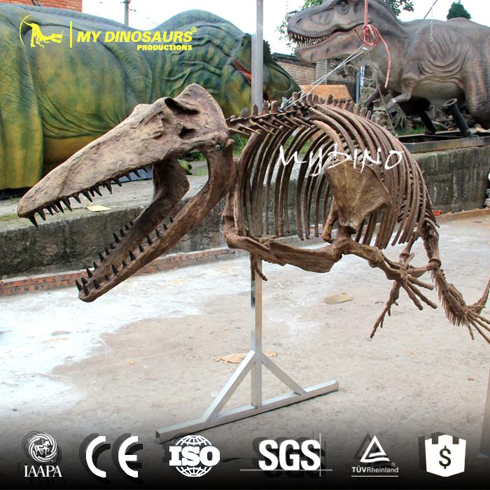 Mosasaur Skeleton 1.jpg
