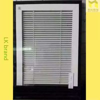 Factory direct-sale Hollow glass windows/Rolling shutter/Magnetic control shutters
